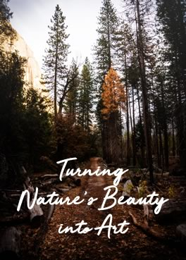 Turning Nature's Beauty into Art